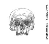 anatomic skull  weathered and... | Shutterstock . vector #668023996