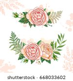 floral collection rose | Shutterstock .eps vector #668033602