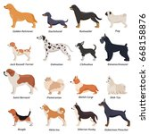 colored profile dogs icon set... | Shutterstock .eps vector #668158876