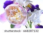 flower arrangement peonies and...   Shutterstock . vector #668287132