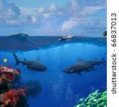 an underwater shot splitted two ... | Shutterstock . vector #66837013