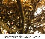 the yellow branch | Shutterstock . vector #668626936