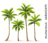 palm trees with shadow isolated ... | Shutterstock .eps vector #668642695