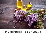 bunches of fresh lavender with... | Shutterstock . vector #668718175