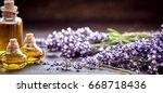 panorama banner of decorative... | Shutterstock . vector #668718436