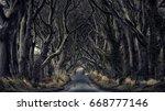 path through the dark hedges. | Shutterstock . vector #668777146