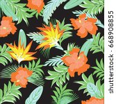 exotic abstract orange flowers... | Shutterstock .eps vector #668908855