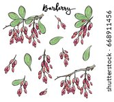 hand drawn painted set of... | Shutterstock . vector #668911456