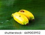 banana | Shutterstock . vector #669003952