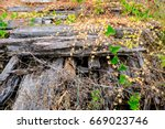 old railway | Shutterstock . vector #669023746