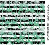 palm tree  pattern  vector ... | Shutterstock .eps vector #669031102