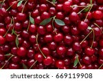 close up of pile of ripe... | Shutterstock . vector #669119908
