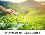 women hand finger picking up ... | Shutterstock . vector #669120856