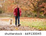 Stock photo mature man on autumn walk with labrador 669130045