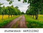 countryside road  alley with...   Shutterstock . vector #669212362