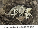 skull skeleton carcass of... | Shutterstock . vector #669282958