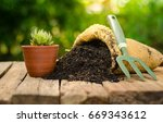 cactus on plant pot with...   Shutterstock . vector #669343612