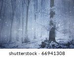 Snowfall In A Magical Forest...