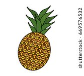 fresh pineapple fruit | Shutterstock .eps vector #669576532