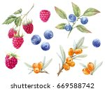 watercolor set of isolated... | Shutterstock . vector #669588742