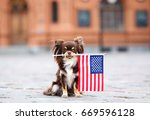 funny chihuahua dog holding... | Shutterstock . vector #669596128
