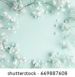 floral composition with light ... | Shutterstock . vector #669887608