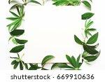 frame of green leaves ... | Shutterstock . vector #669910636
