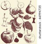 fruit set  hand drawn apples... | Shutterstock .eps vector #66994735