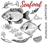 seafood. fish illustrations... | Shutterstock .eps vector #669947698