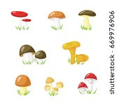 set of eight mushrooms in the