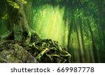 green dark forest  sunbeams ... | Shutterstock . vector #669987778