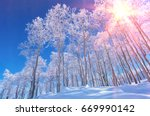 snow covered forest | Shutterstock . vector #669990142