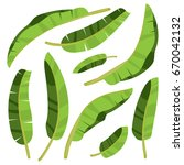 cartoon tropical palm leaves.... | Shutterstock .eps vector #670042132