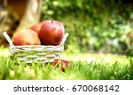apples in the basket on the... | Shutterstock . vector #670068142