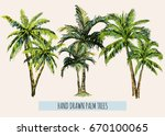 beautiful hand drawn botanical... | Shutterstock .eps vector #670100065