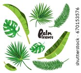 cartoon tropical palm leaves... | Shutterstock .eps vector #670153576