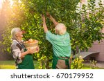 woman and man picking apples.... | Shutterstock . vector #670179952