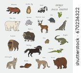 animals of north america doodle ... | Shutterstock .eps vector #670236322