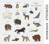 animals of north america doodle ... | Shutterstock .eps vector #670236322