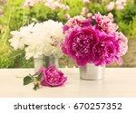peony flowers | Shutterstock . vector #670257352