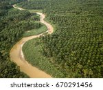 aerial view   palm oil... | Shutterstock . vector #670291456