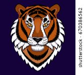embroidery tiger colorful head. ... | Shutterstock .eps vector #670386562