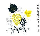 hand drawn grapes illustration... | Shutterstock .eps vector #670451356