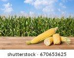 Fresh Corn Cobs On Wooden Tabl...