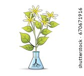glass flask with flower plant... | Shutterstock .eps vector #670671916