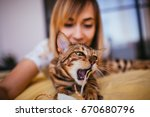 Stock photo woman plays with a rope with bengal cat 670680796