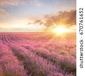 sunset over a summer lavender... | Shutterstock . vector #670761652