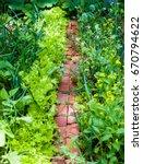 vegetable garden in late summer.... | Shutterstock . vector #670794622
