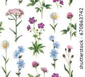 watercolor illustrations of... | Shutterstock . vector #670863742
