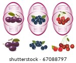 set of  labels with berries and ... | Shutterstock .eps vector #67088797